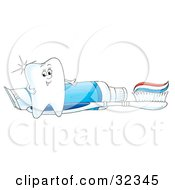 Sparkling White Tooth Character Standing By A Toothbrush And Tube Of Toothpaste
