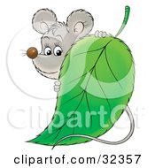 Clipart Illustration Of A Cute Gray Mouse Standing Behind A Green Leaf
