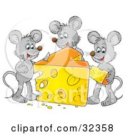 Clipart Illustration Of Three Gray Mice Dining On A Big Wedge Of Swiss Cheese