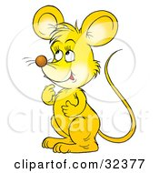Clipart Illustration Of A Cute Yellow Mouse Thinking And Facing To The Left by Alex Bannykh
