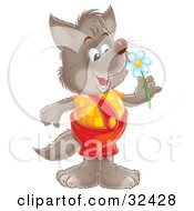 Clipart Illustration Of A Happy Wolf In Shortalls Holding A Spring Daisy Flower by Alex Bannykh