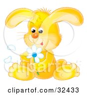 Clipart Illustration Of A Cute Yellow Bunny Rabbit Sitting And Picking Petals Off Of A White Daisy Flower