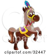 Dark Brown Horse In A Colorful Saddle Hat And Reins Standing Up On Its Hind Legs