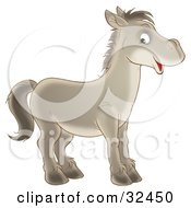 Happy Gray Horse Facing To The Right And Glancing At The Viewer