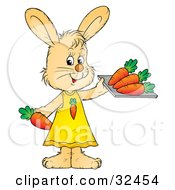 Clipart Illustration Of A Female Beige Bunny In A Dress Holding A Tray Of Healthy Carrots