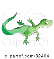 Clipart Illustration Of A Cute Green Lizard Facing Right Glancing Back At The Viewer by Alex Bannykh