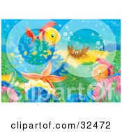 Poster, Art Print Of Two Fish A Clam Crab And Starfish On A Colorful Reef