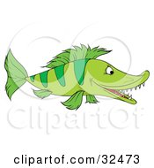 Clipart Illustration Of A Green Fish With Stripes And Sharp Teeth Swimming In Profile