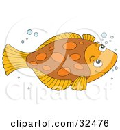 Clipart Illustration Of A Cute Brown And Orange Flounder Fish Swimming With Bubbles