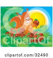 Clipart Illustration Of A Happy Squirrel In A Tree Surrounded By His Gathered Acorns On A Warm Sunny Day