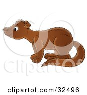 Clipart Illustration Of A Curious Brown Mink In Profile Facing Left And Sniffing The Air