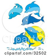 Group Of Five Blue Dolphins Jumping Up Out Of Water In Front Of A Sun