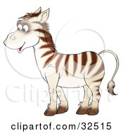 Cute Zebra With Brown Stripes On A White Base Coat