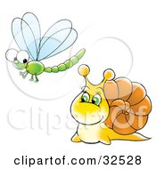 Friendly Yellow Snail Talking To A Green Dragonfly