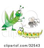 Cute Green Caterpillar Grasshopper And Fly Socializing