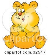 Chubby Hamster Holding A Stem Of Wheat And Rubbing His Belly