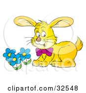 Clipart Illustration Of A Yellow Rabbit Wearing A Purple Bow Smelling Blue Spring Flowers