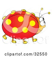 Happy Red Ladybug With Yellow Spotted Wings
