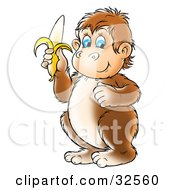 Clipart Illustration Of A Brown Chubby Blue Eyed Monkey Holding A Banana by Alex Bannykh