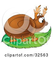 Clipart Illustration Of A Happy Brown Beetle On A Green Leaf by Alex Bannykh