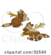 Two Cute Brown Beavers Carrying Wood Logs