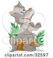 Clipart Illustration Of A Happy Gray Wolf Sitting On A Tree Stump And Looking Upwards As If Praying by Alex Bannykh