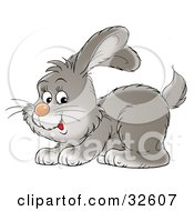 Clipart Illustration Of A Playful Gray Bunny Crouching Down And Hopping