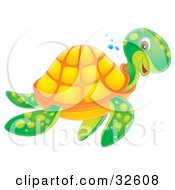 Smiling Green And Orange Sea Turtle Swimming Past