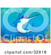 Clipart Illustration Of A Blue And White Marlin Or Swordfish Swimming Over A Coral Reef
