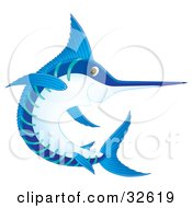 Clipart Illustration Of A Blue And White Marlin Or Swordfish Swimming