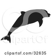 Black Silhouetted Dolphin Swimming
