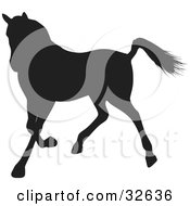 Trotting Black Silhouetted Horse