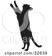 Clipart Illustration Of A Curious Cat Silhouetted In Black Standing Up On Its Hind Legs And Reaching Upward With Its Paws by KJ Pargeter