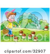 Little Boy Carrying A Basket And Picking Wild Mushrooms