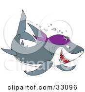 Clipart Illustration Of A Gray And White Pirate Shark Swimming With Bubbles by Alex Bannykh