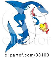 Clipart Illustration Of A Yellow Fish Looking Up While Taking To A Blue And White Shark by Alex Bannykh #COLLC33100-0056