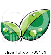 Clipart Illustration Of A Pre Made Logo Of Lush Green Leaves With Dew