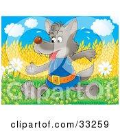 Sweaty Wolf Walking Past Flowers And Golden Wheat Fields