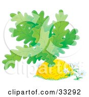 Clipart Illustration Of White Daisies Growing Around A Giant Turnip Or Carrot by Alex Bannykh