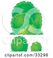 Clipart Illustration Of Three Different Lush Green Bushes