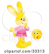 Clipart Illustration Of A Yellow Bunny Rabbit In A Pink Shirt Standing By A Happy Ball