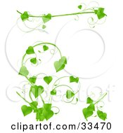 Clipart Illustration Of A Lush Green Vine With Heart Shaped Leaves Growing On A White Background