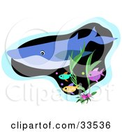 Clipart Illustration Of A Blue Whale Swimming Above Seaweed With Colorful Fish by bpearth