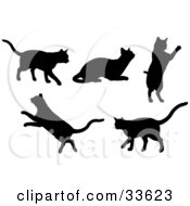 Clipart Illustration Of A Set Of Silhouetted Kitty Cats Walking Resting Jumping And Leaping by KJ Pargeter