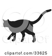 Black Silhouetted Feline Walking In Profile