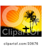 Clipart Illustation Of A Lone Silhouetted Surfer Carrying His Board Up A Hill By Palm Trees At Sunset