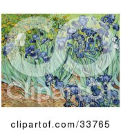 Clipart Illustration Of A Flower Bed Of Iris Flowers Original By Vincent Van Gogh by JVPD #COLLC33765-0002