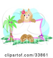 Clipart Illustration Of A Tropical Cat Sitting By A Palm Tree Holding Up A Blank Sign by bpearth
