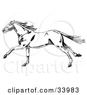 Clipart Illustration Of A Black And White Wild Horse In Profile Running To The Left Its Tail And Mane Waving In The Wind by C Charley-Franzwa #COLLC33983-0078
