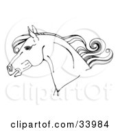 Clipart Illustration Of A Black And White Horse Head In Profile With A Curly Mane by C Charley-Franzwa